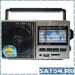 Радиоприемник FEPE FP-901U (USB, SD, Наушники, 220V)